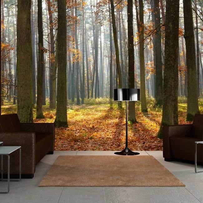 Fototapeta - Autumn trees