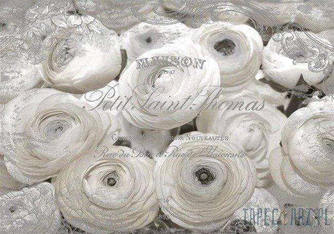 Fototapeta Białe róże 2424