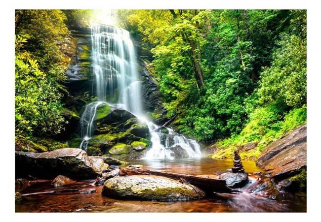 Fototapeta - Cud natury