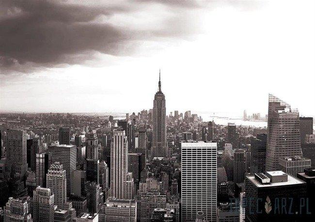 Fototapeta Czarno-biały Empire State Building 403