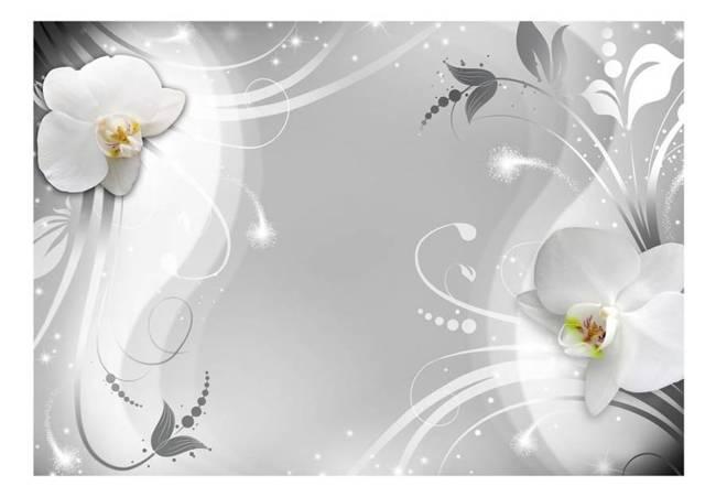 Fototapeta - Czarująca orchidea