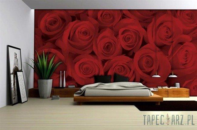 Fototapeta Czerwone róże 240