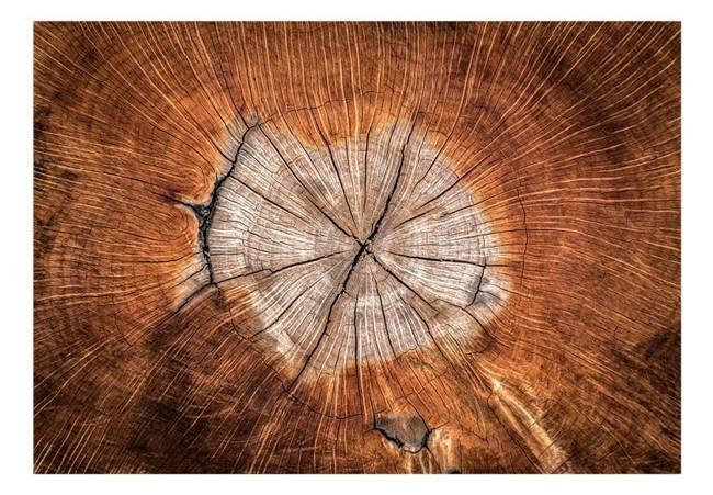 Fototapeta - Dusza drzewa