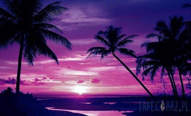 Fototapeta Fioletowo-różowy zachód słońca na plaży 889
