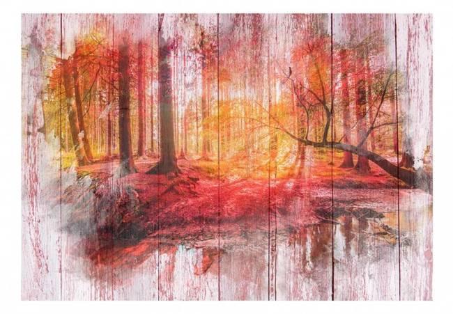 Fototapeta - Jesienny las