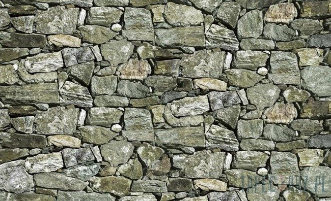 Fototapeta Kamienna ściana - skały 2190