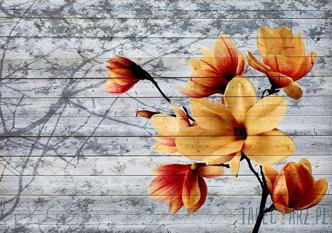 Fototapeta Kwiaty 3521