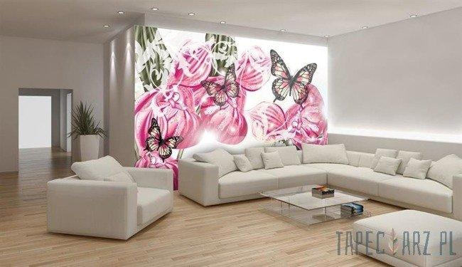 Fototapeta Motyle na różowym tle 556