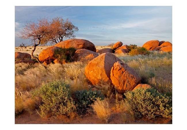 Fototapeta - Pejzaż afrykański, Namibia