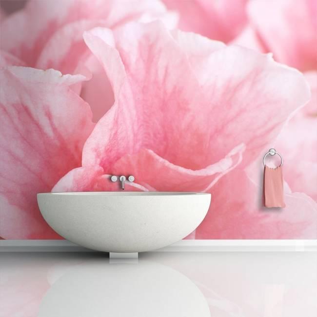Fototapeta - Różowe kwiaty azalii