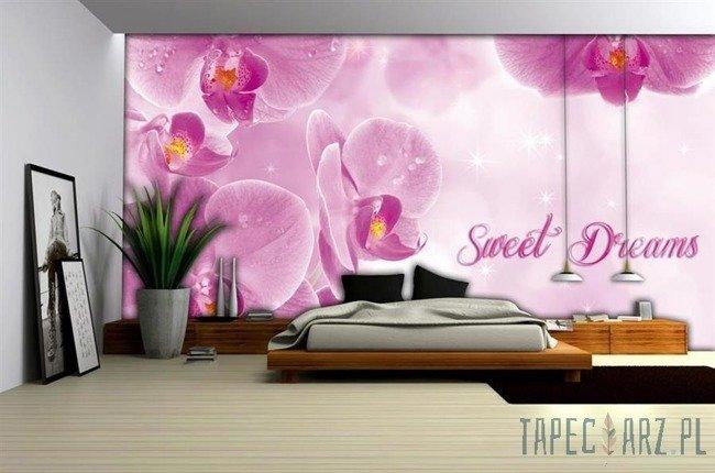 Fototapeta Sweet dreams 778