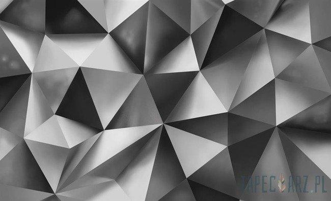 Fototapeta Szara abstrakcja 3D 3477