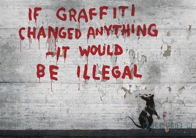 Fototapeta Szczur i napis na ścianie - Banksy 3025