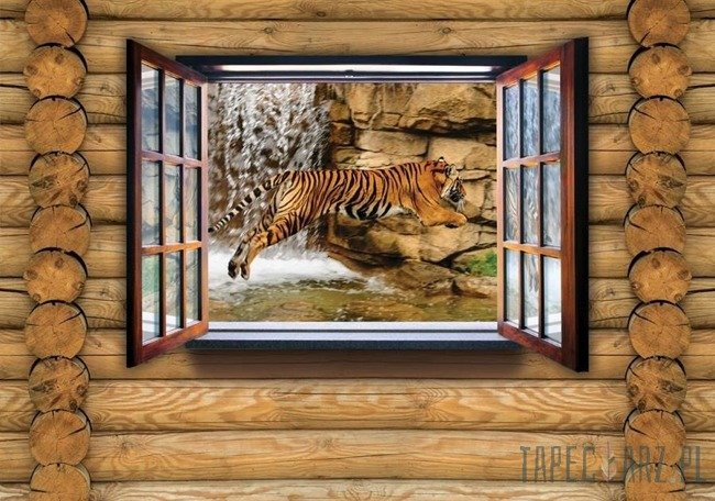 Fototapeta Tygrys na drewnianej ścianie 2218