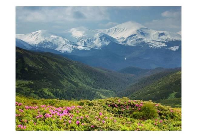 Fototapeta - Wiosenny krajobraz górski