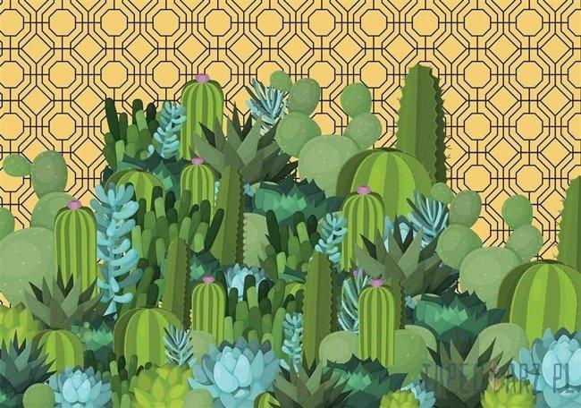 Fototapeta Wyspa kaktusów 11072