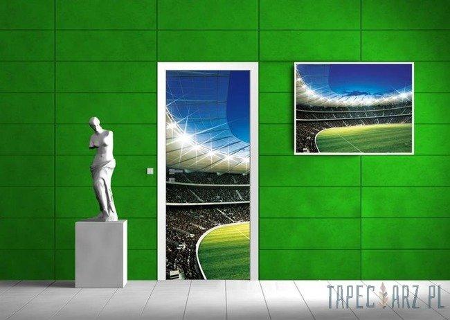 Fototapeta na drzwi Boisko piłki nożnej 323VET/SKT