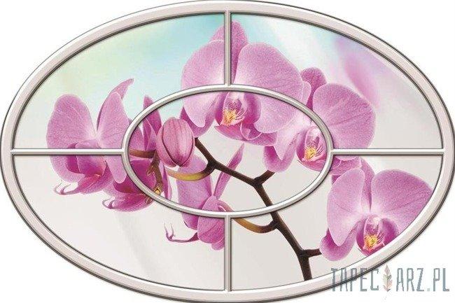 Fototapeta na flizelinie Orchidea okno 919