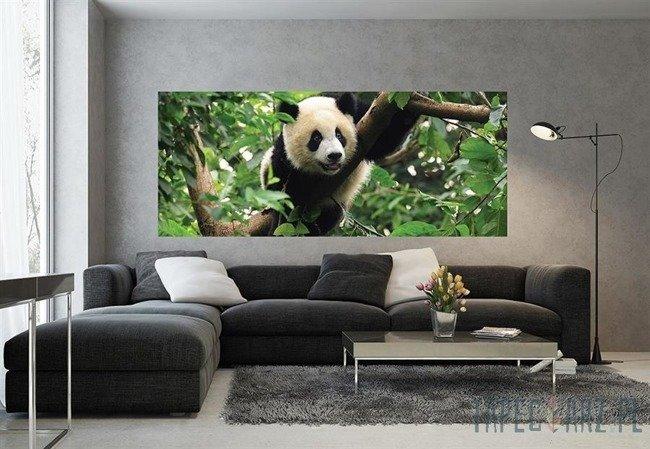 Fototapeta na flizelinie Panda na drzewie 3398VEP