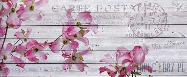 Fototapeta na flizelinie Różowe kwiaty na deskach 3546VEP