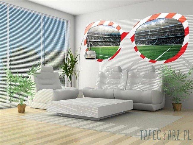 Fototapeta na flizelinie Stadion w biało-czerwonych okularach 726
