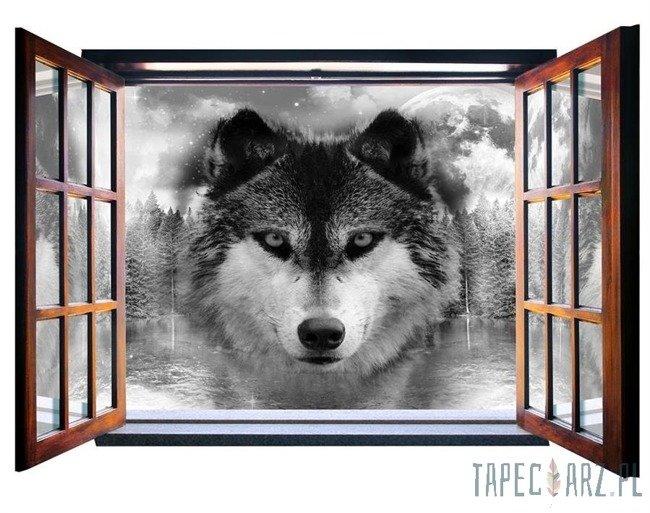Fototapeta na flizelinie Wilk - Widok przez otwarte okno 10147