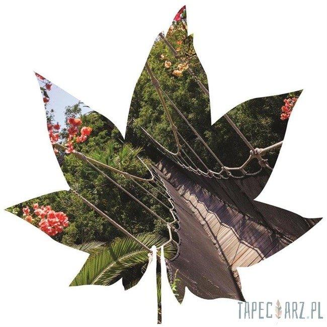 Fototapeta w kształcie liścia - Most w dżungli 901