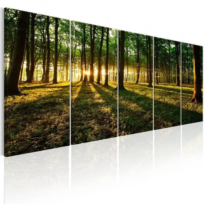 Obraz - Cień drzew I