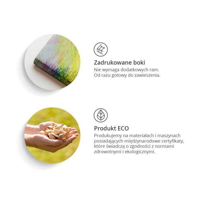 Obraz - Ogród Zen