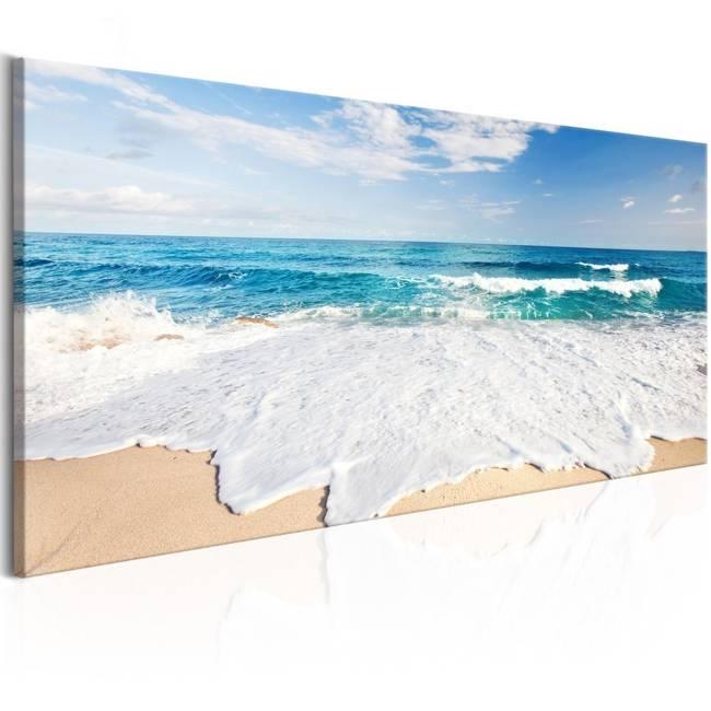 Obraz - Plaża na wyspie Captiva