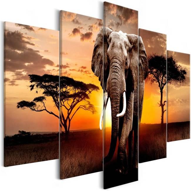 Obraz - Wędrówka słonia (5-częściowy) szeroki