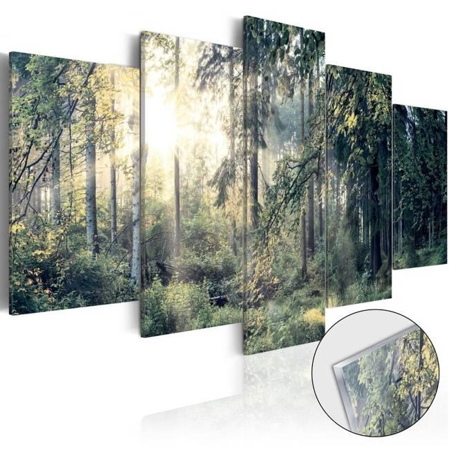 Obraz na szkle akrylowym - Baśniowy krajobraz [Glass]