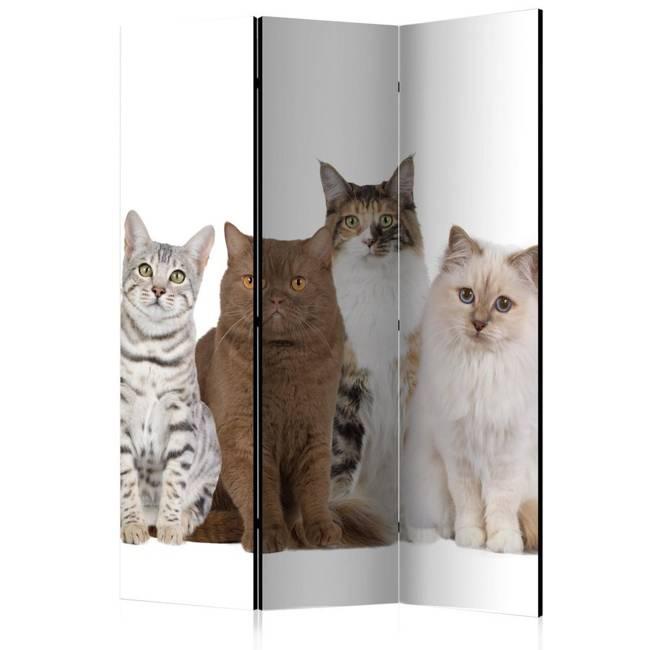 Parawan 3-częściowy - Słodkie kotki [Room Dividers]