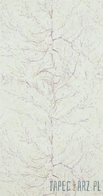 Tapeta ścienna BN International 17162 Van Gogh